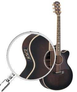 guitare acoustique vs electro acoustique