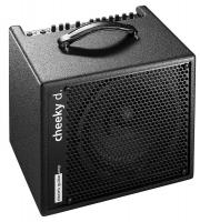 Combo ampli acoustique Aer Cheeky D 10