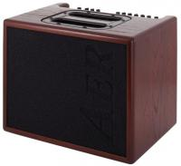 Combo ampli acoustique Aer Compact 60/3 Oak Dark