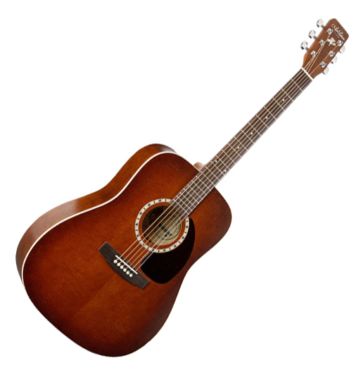 Art Et Lutherie Americana Dreadnought Qit: Guitare Folk Art Et Lutherie Dreadnought Cedar