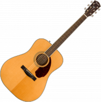 image PM-1 Standard Dreadnought (OV) - natural