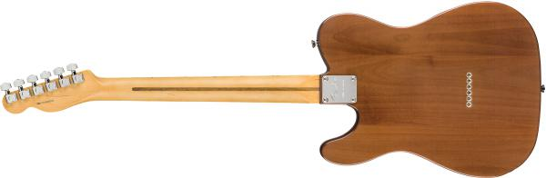 Guitare électrique solid body Fender Rarities Chambered Telecaster Flame Maple Top (USA, MN) - natural