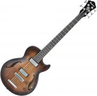 AGBV205A TCL - Tobacco Burst Low Gloss