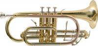 Cornet professionnel Sml CO870-L
