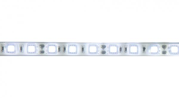 Décoration lumineuse Starway TapeKolor 60 Daylight IP68 fond blanc