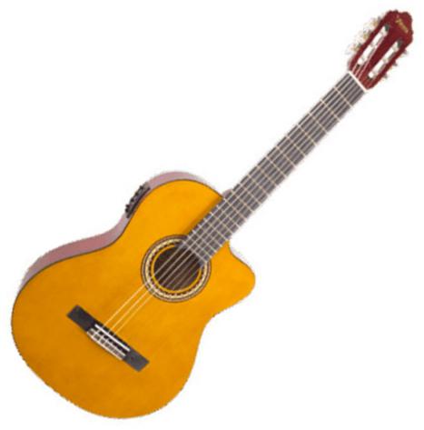 guitare acoustique valencia