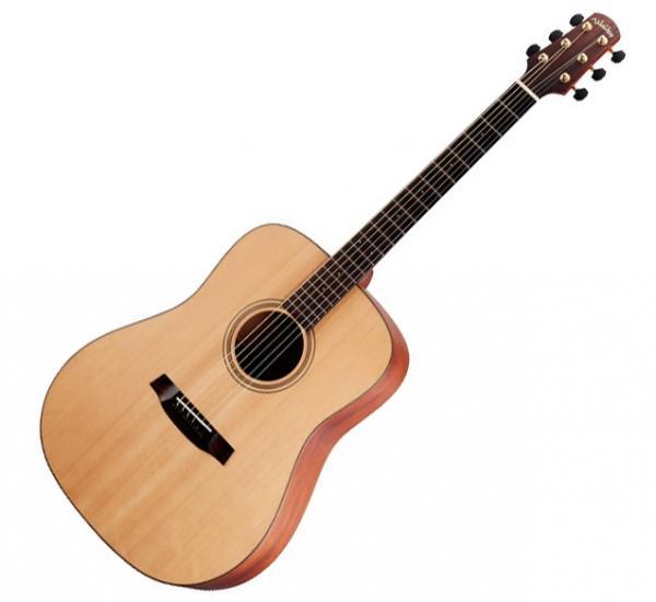 Guitare folk Walden Walden Serie 2000 D2040 Supranatura ...